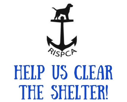 CLEAR THE SHELTER Header