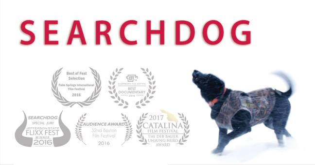 Searchdog.jpg