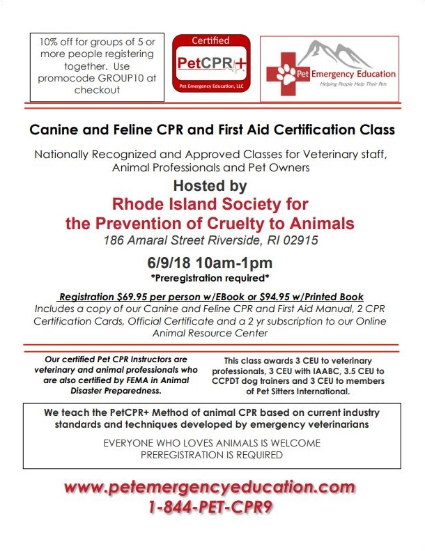 Pet Cpr Class At Rispca Rhode Island Spca